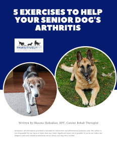 Cover of Arthritis Exercise Guide