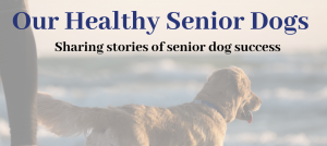 Our Healthy Senior Dogs Facebook Group Banner