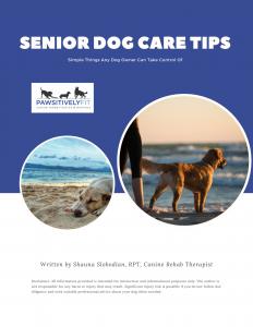 Senior Dog Care Tips Guide